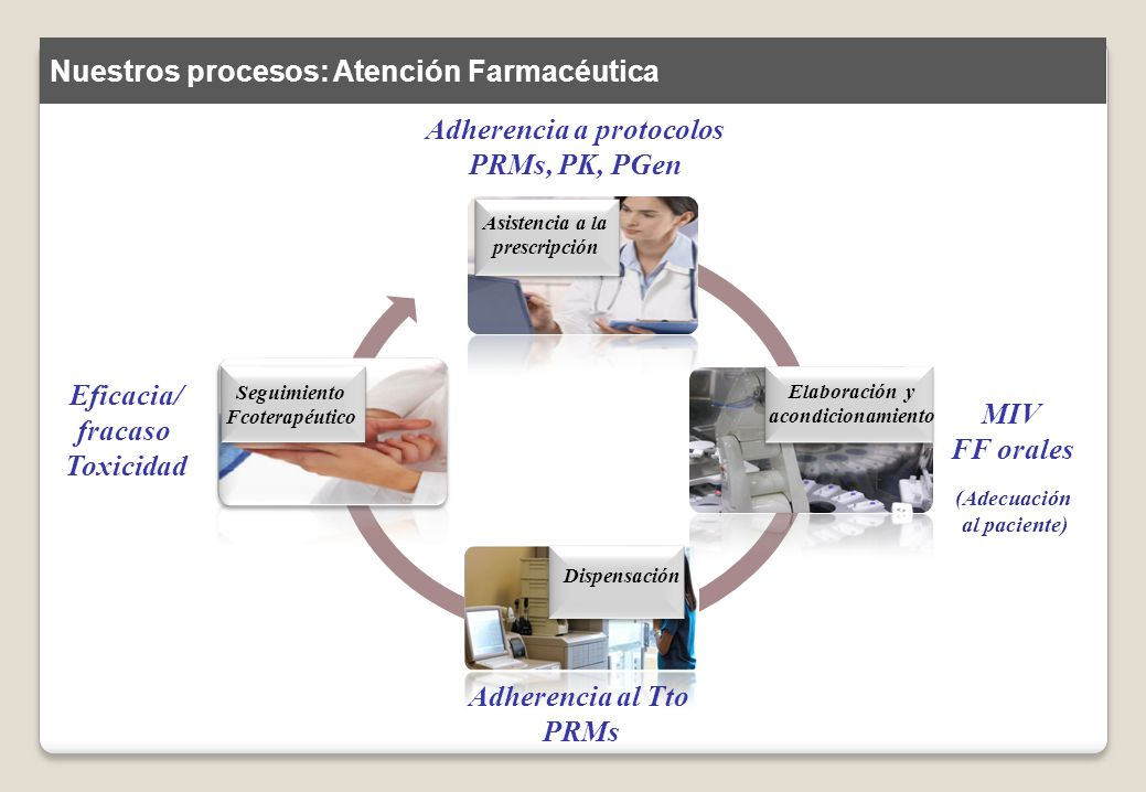 Adherencia a protocolos