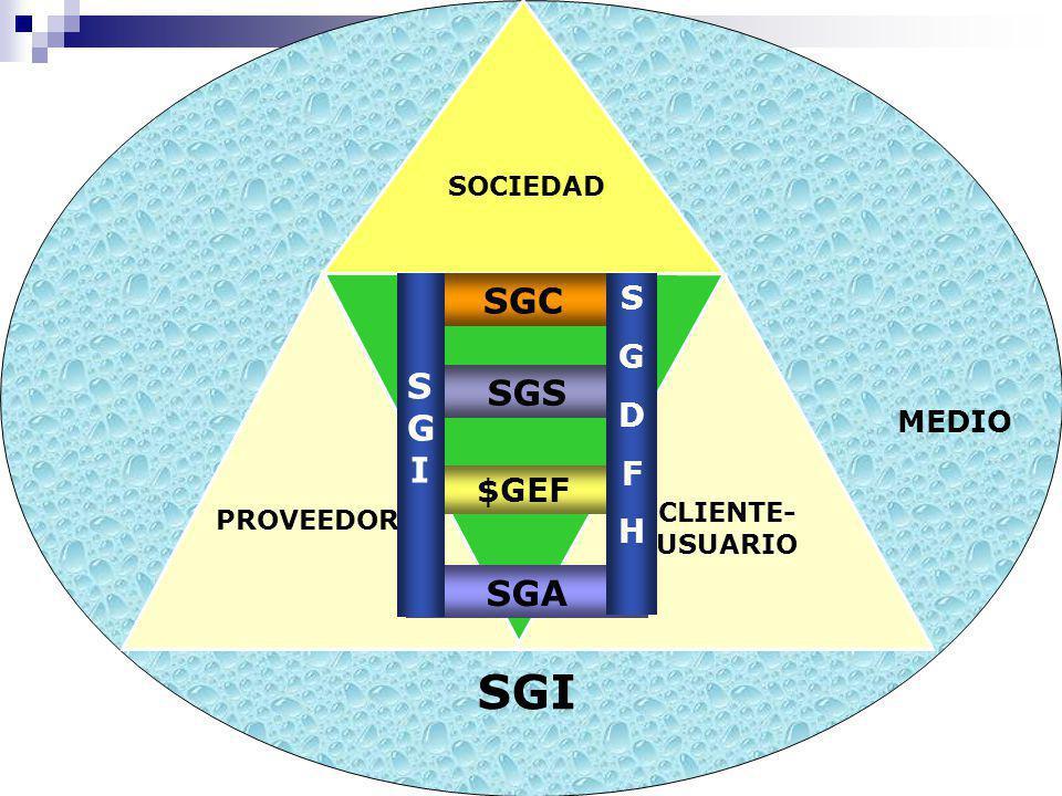 SGI SOCIEDAD SGC S G I SGS SGA S G D F H $GEF SOCIEDAD CLIENTE-USUARIO