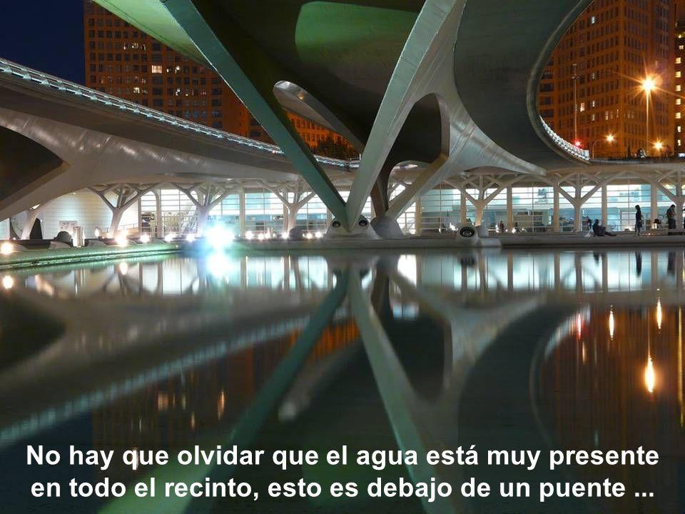 No hay que olvidar que el agua está muy presente en todo el recinto, esto es debajo de un puente ...