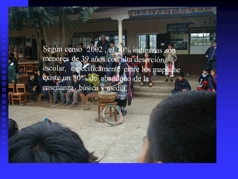 Según censo 2002 , el 70% indígenas son menores de 39 años con alta deserción escolar, específicamente entre los mapuche existe un 30% de abandono de la enseñanza bàsica y media.