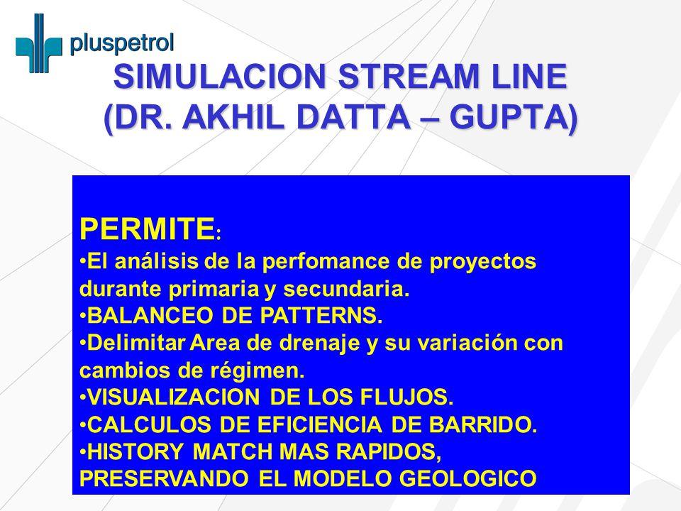 SIMULACION STREAM LINE (DR. AKHIL DATTA – GUPTA)