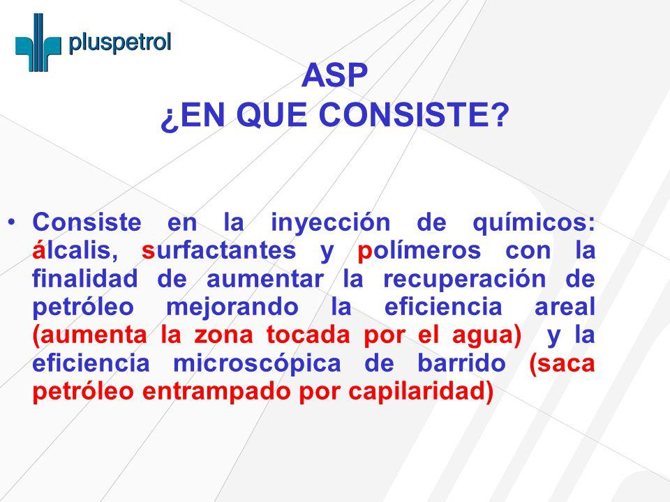 ASP ¿EN QUE CONSISTE