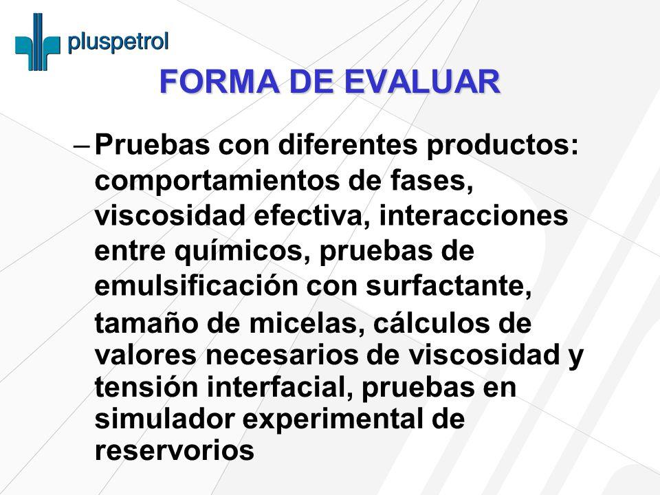 FORMA DE EVALUAR