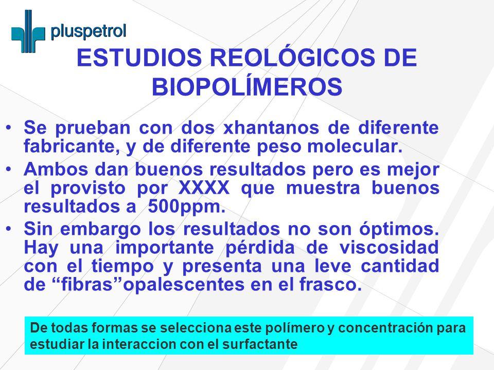 ESTUDIOS REOLÓGICOS DE BIOPOLÍMEROS