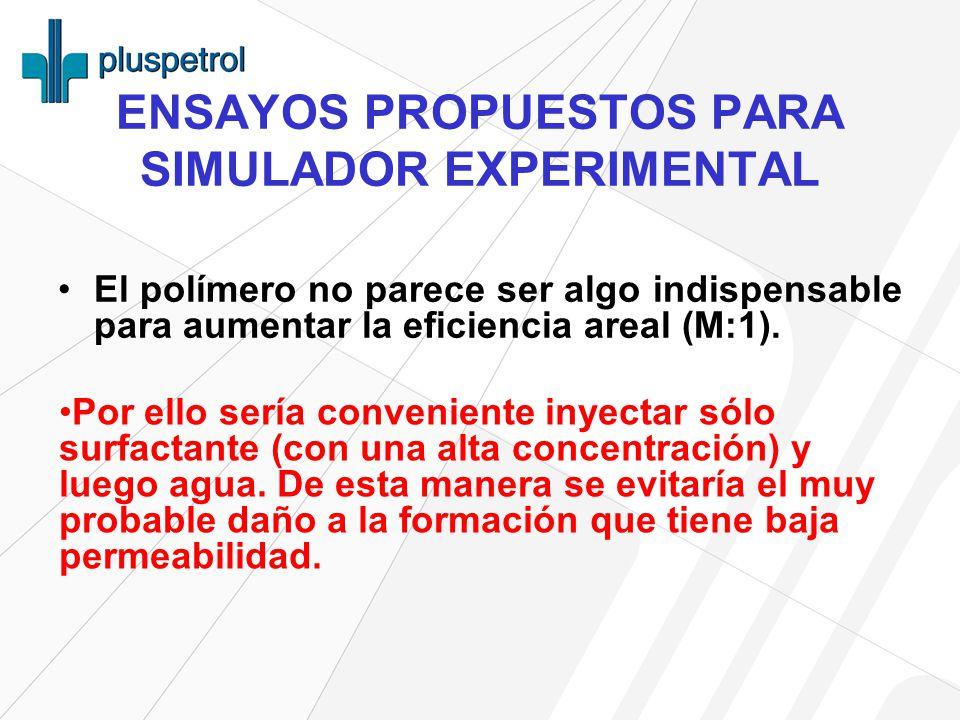 ENSAYOS PROPUESTOS PARA SIMULADOR EXPERIMENTAL