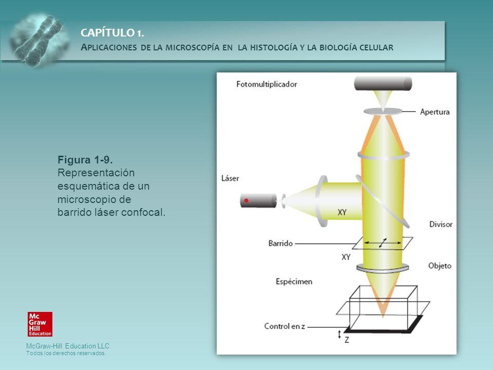 Figura 1-9. Representación esquemática de un microscopio de