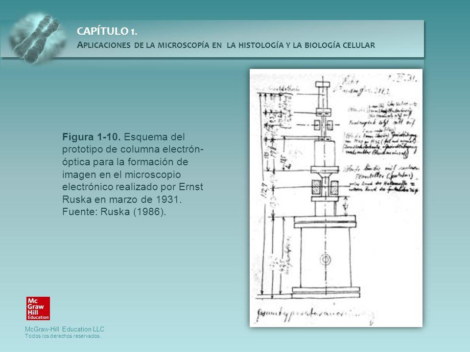 Figura 1-10.