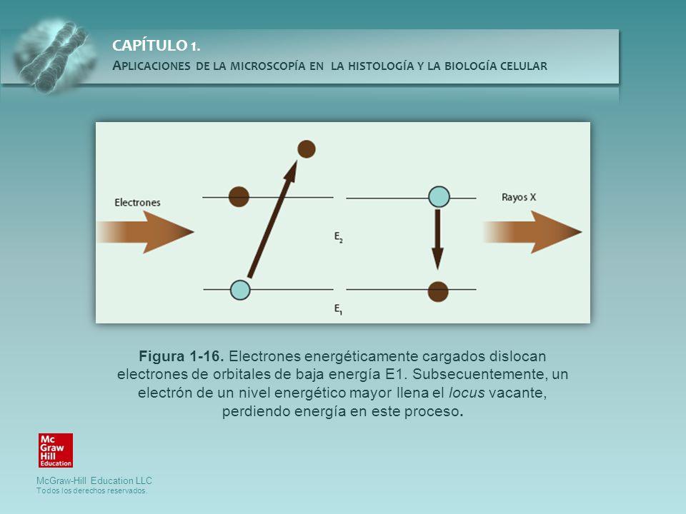 Figura 1-16.