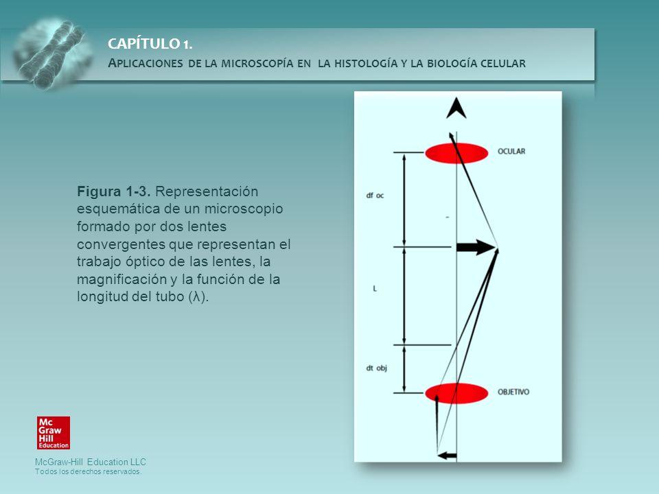 Figura 1-3.