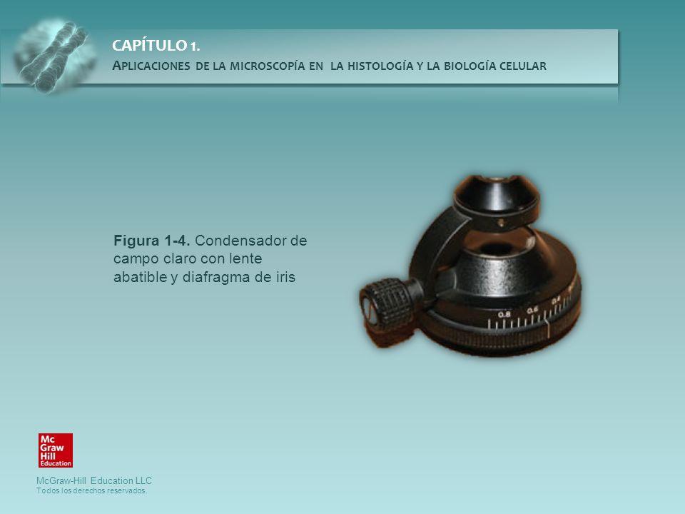Figura 1-4. Condensador de campo claro con lente abatible y diafragma de iris