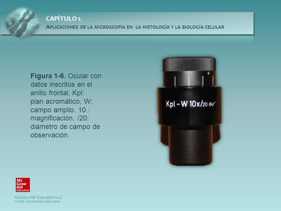 Figura 1-6. Ocular con datos inscritos en el anillo frontal, Kpl: