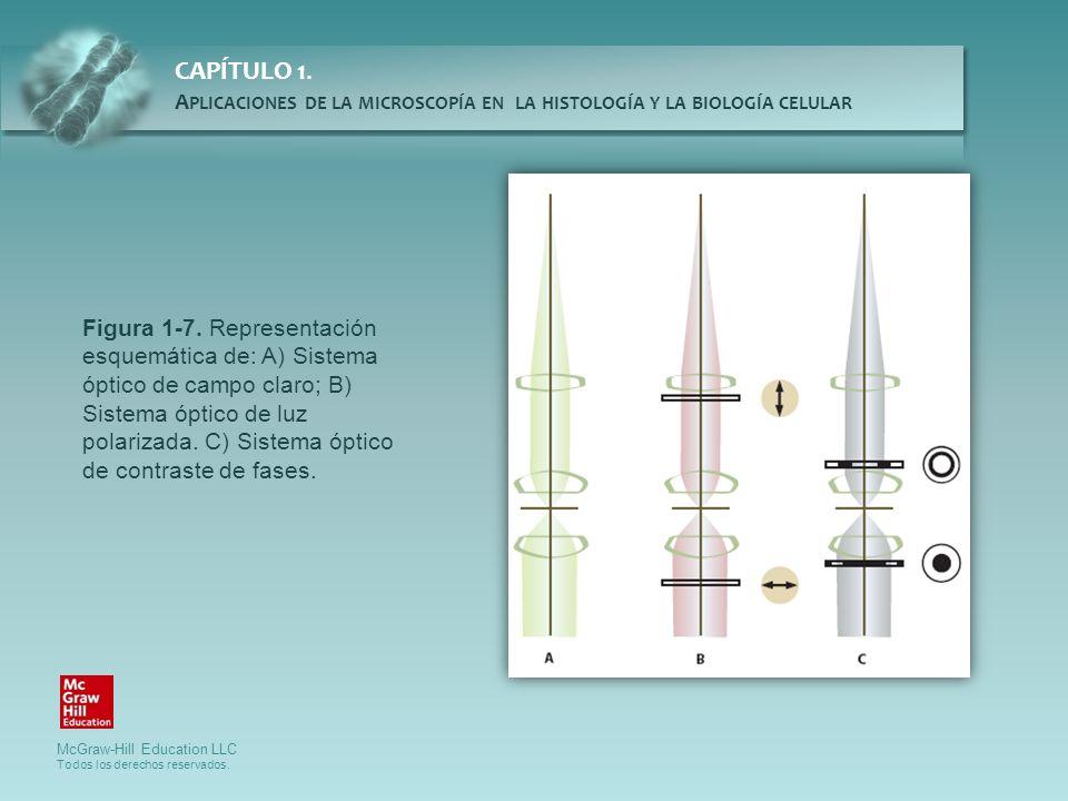 Figura 1-7.
