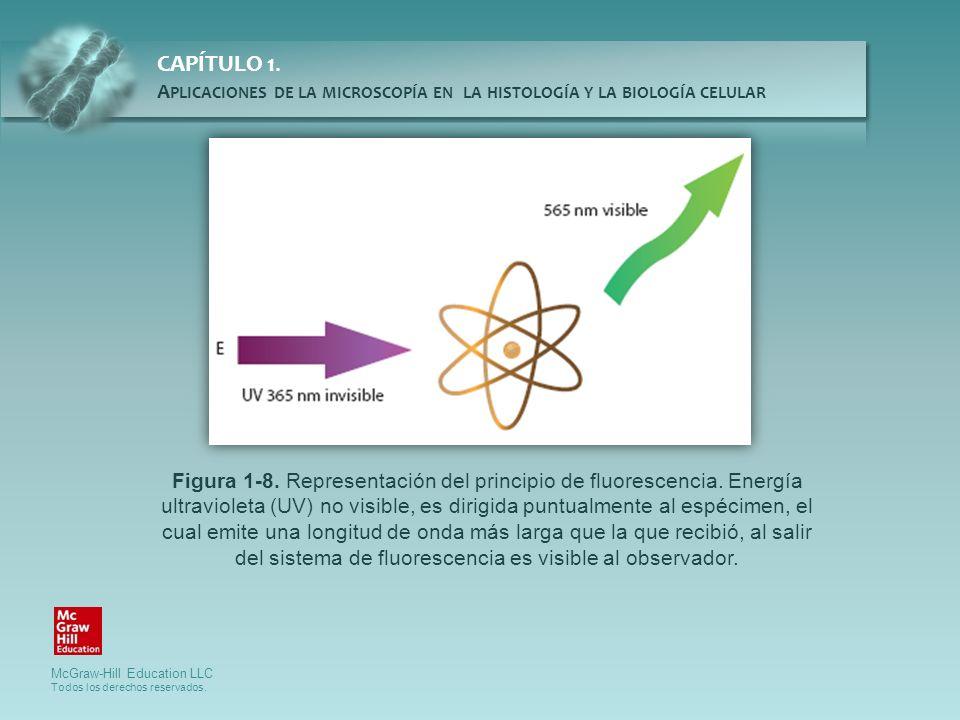 Figura 1-8. Representación del principio de fluorescencia
