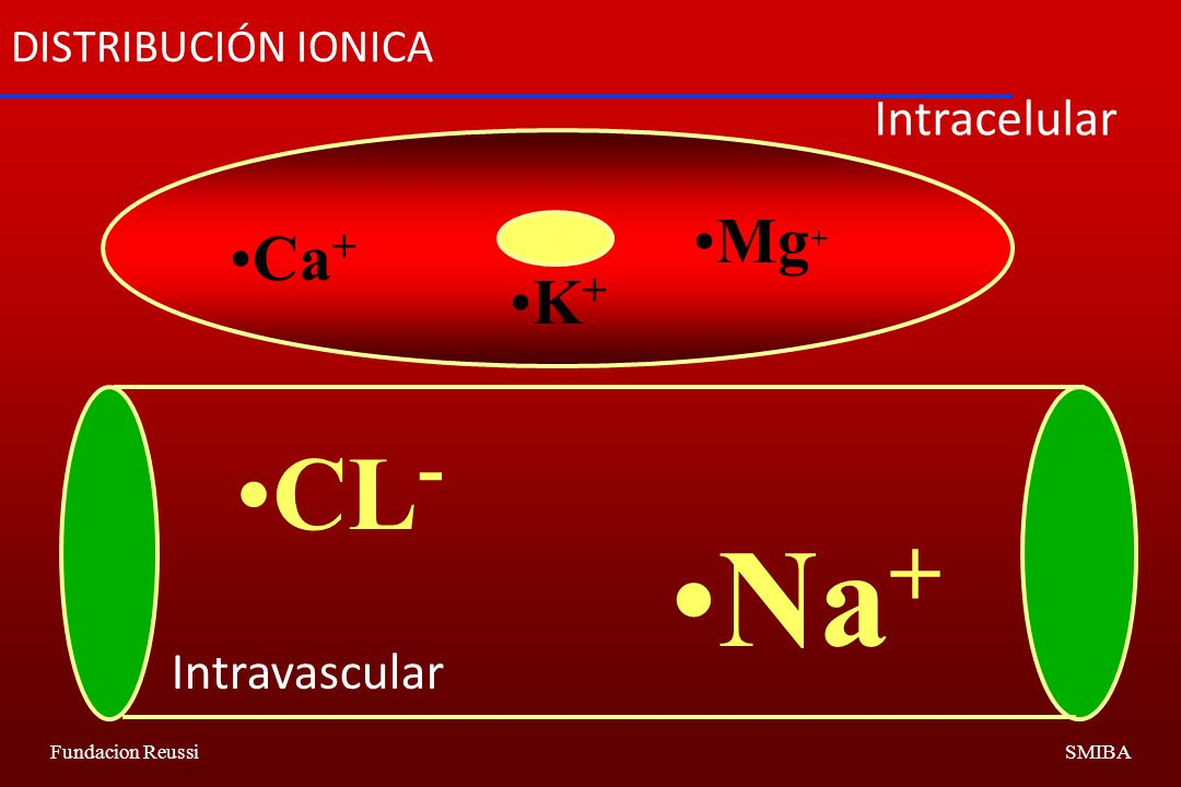 DISTRIBUCIÓN IONICA Intracelular Mg+ Ca+ K+ CL- Na+ Intravascular