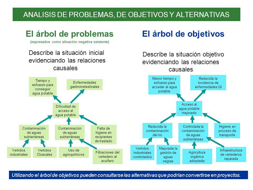 ANALISIS DE PROBLEMAS, DE OBJETIVOS Y ALTERNATIVAS