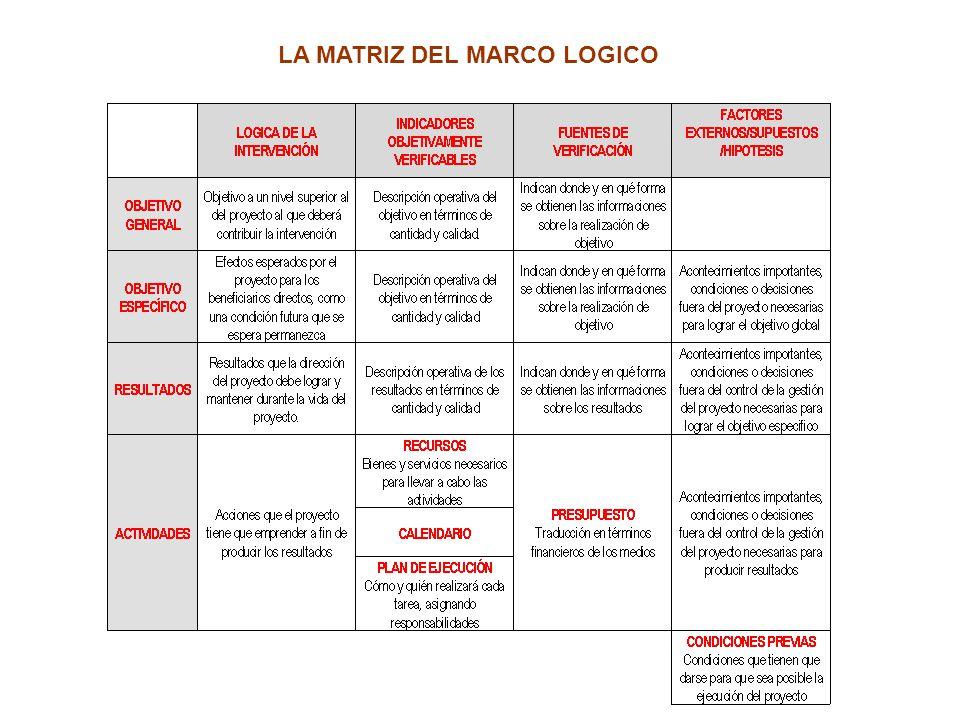 LA MATRIZ DEL MARCO LOGICO