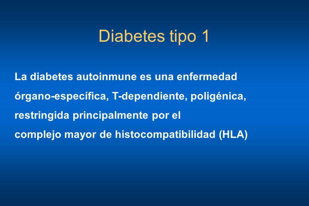 Diabetes tipo 1 La diabetes autoinmune es una enfermedad