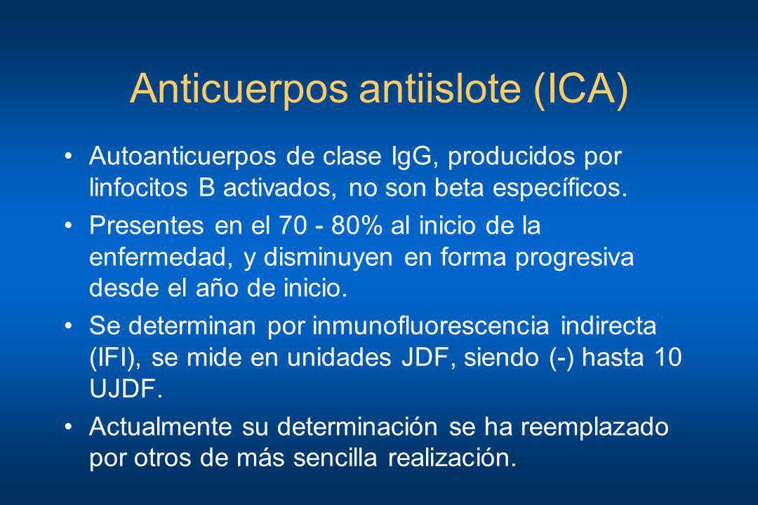 Anticuerpos antiislote (ICA)