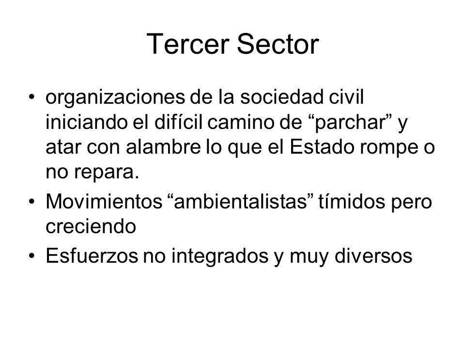 Tercer Sector organizaciones de la sociedad civil iniciando el difícil camino de parchar y atar con alambre lo que el Estado rompe o no repara.