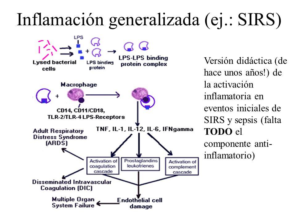 Inflamación generalizada (ej.: SIRS)