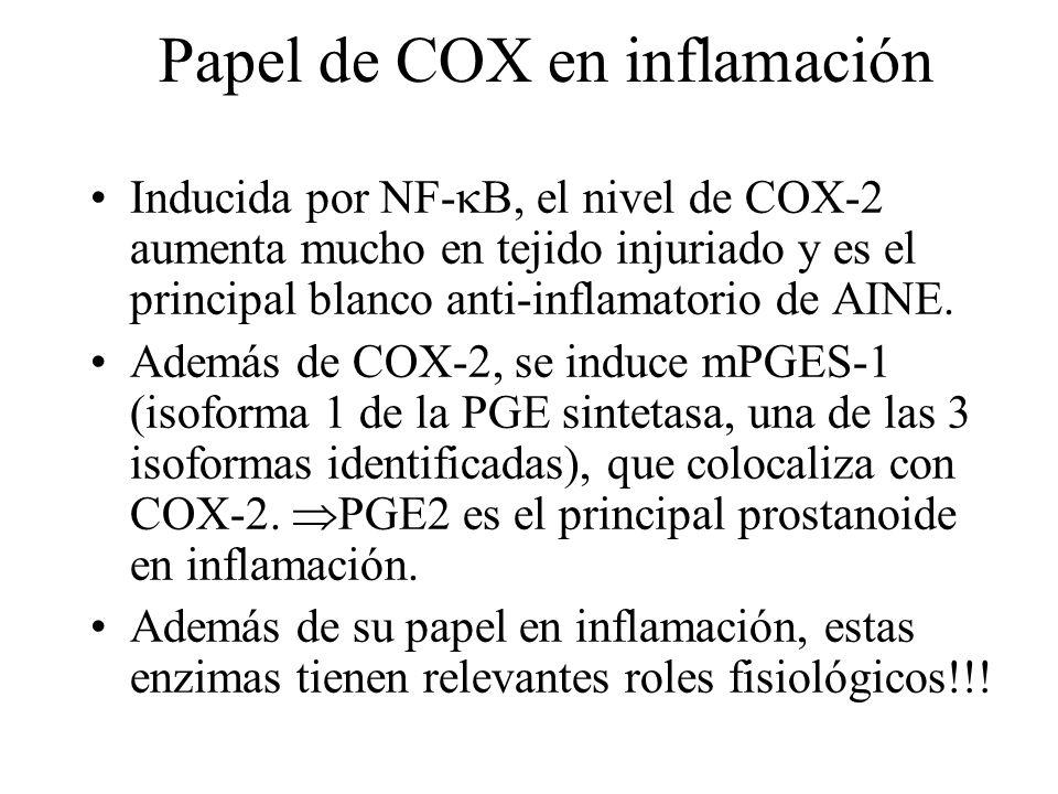 Papel de COX en inflamación