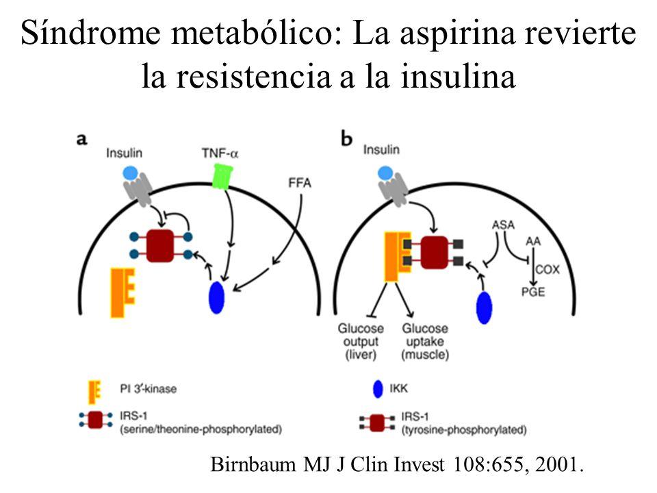 Síndrome metabólico: La aspirina revierte la resistencia a la insulina