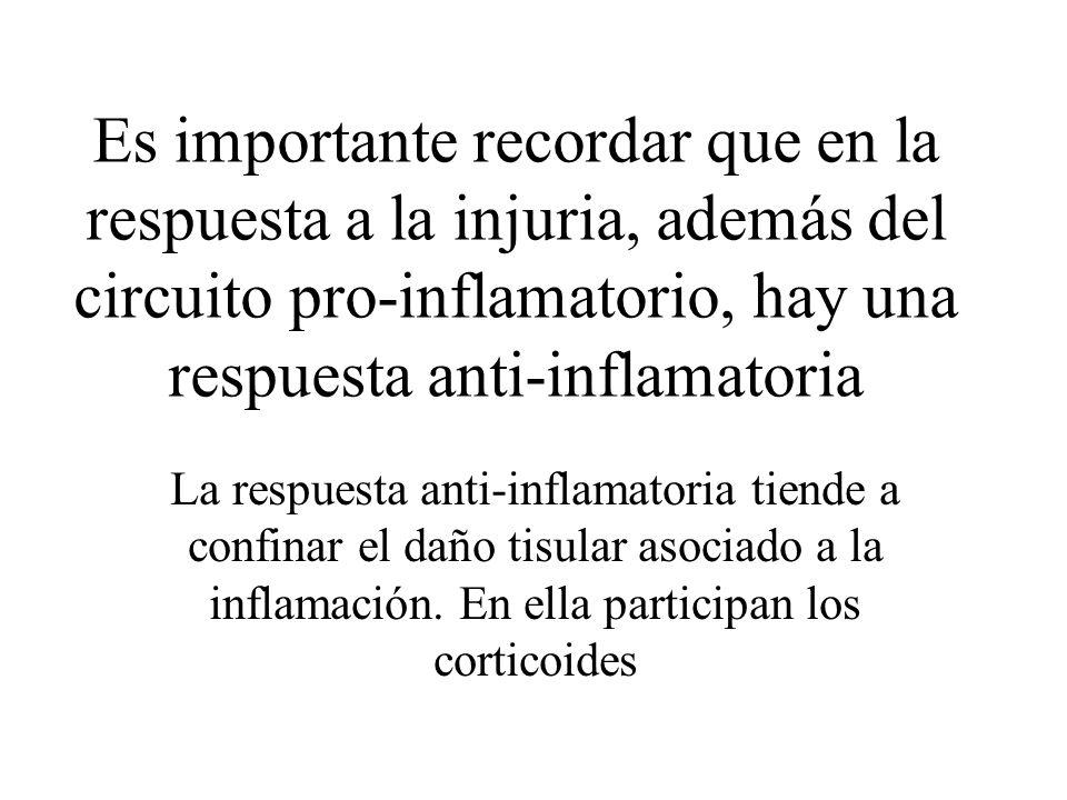Es importante recordar que en la respuesta a la injuria, además del circuito pro-inflamatorio, hay una respuesta anti-inflamatoria