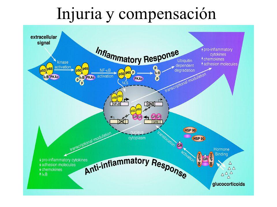 Injuria y compensación