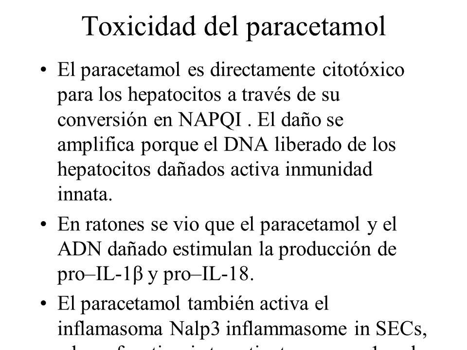Toxicidad del paracetamol