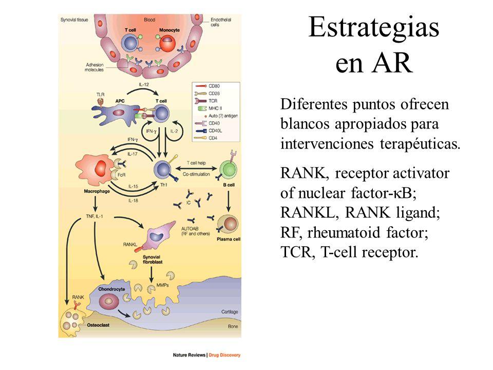 Estrategias en AR Diferentes puntos ofrecen blancos apropiados para intervenciones terapéuticas.