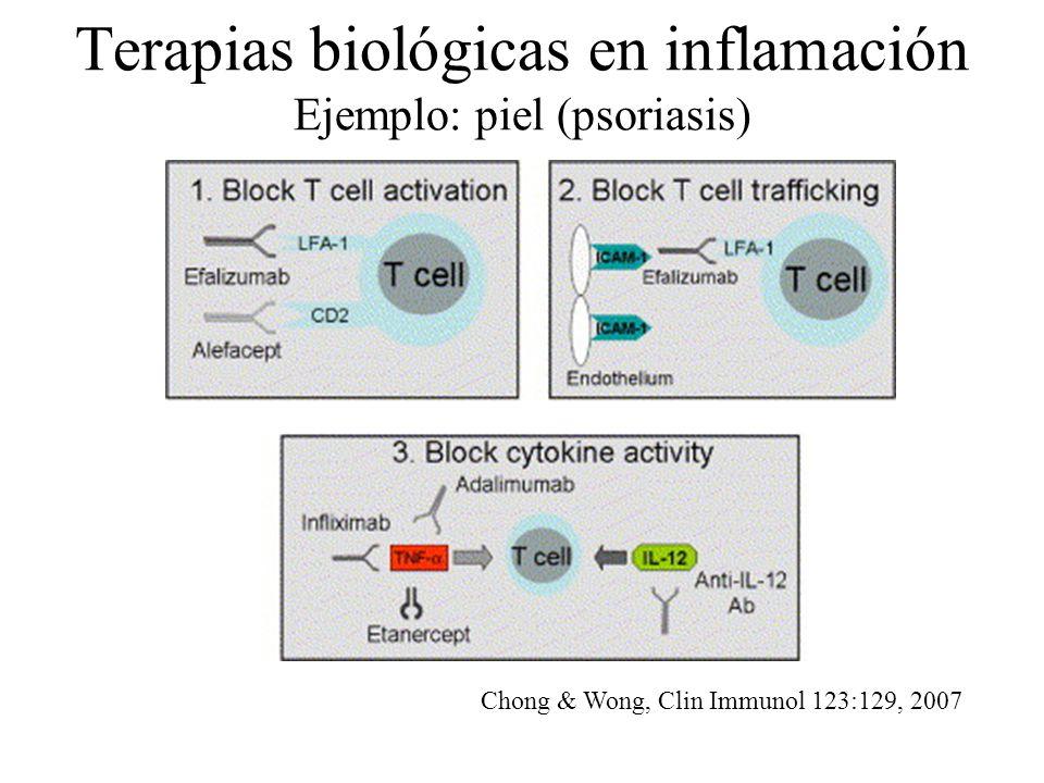 Terapias biológicas en inflamación Ejemplo: piel (psoriasis)