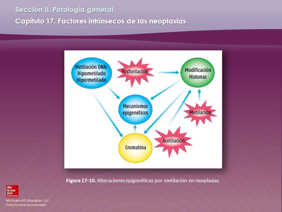 Figura 17-10. Alteraciones epigenéticas por metilación en neoplasias.