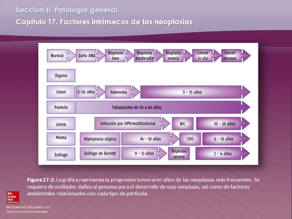 Figura 17-2. La gráfica representa la progresión tumoral en años de las neoplasias más frecuentes.