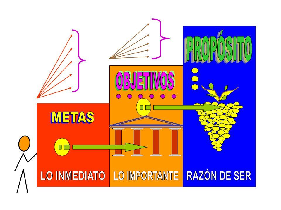 OBJETIVOS LO IMPORTANTE PROPÓSITO RAZÓN DE SER METAS LO INMEDIATO