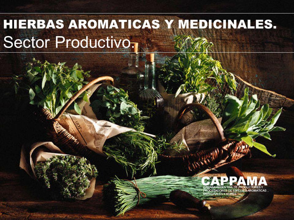 HIERBAS AROMATICAS Y MEDICINALES. Sector Productivo.