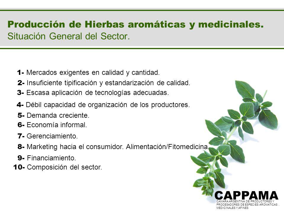 Producción de Hierbas aromáticas y medicinales