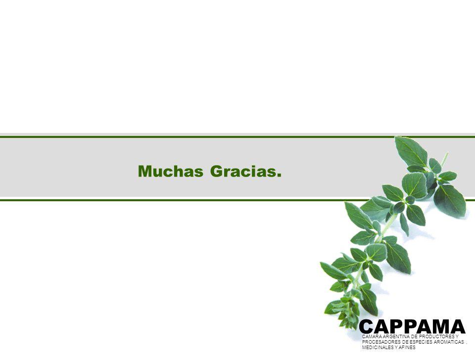 CAPPAMA CAPPAMA Muchas Gracias.
