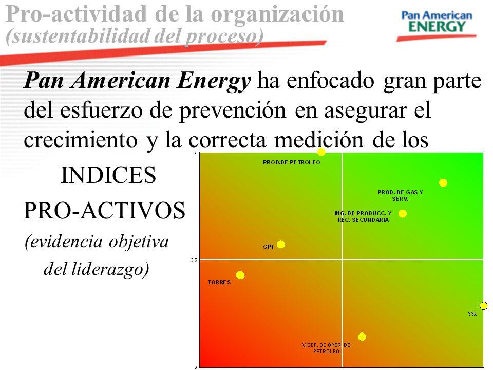 Pro-actividad de la organización (sustentabilidad del proceso)