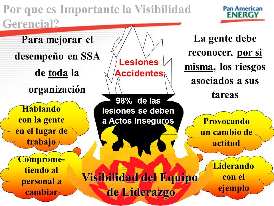 Visibilidad del Equipo 98% de las lesiones se deben a Actos Inseguros