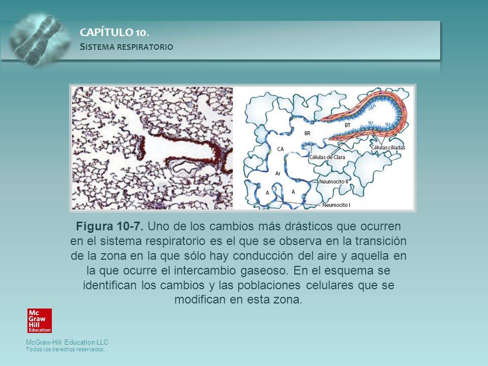 Figura 10-7.