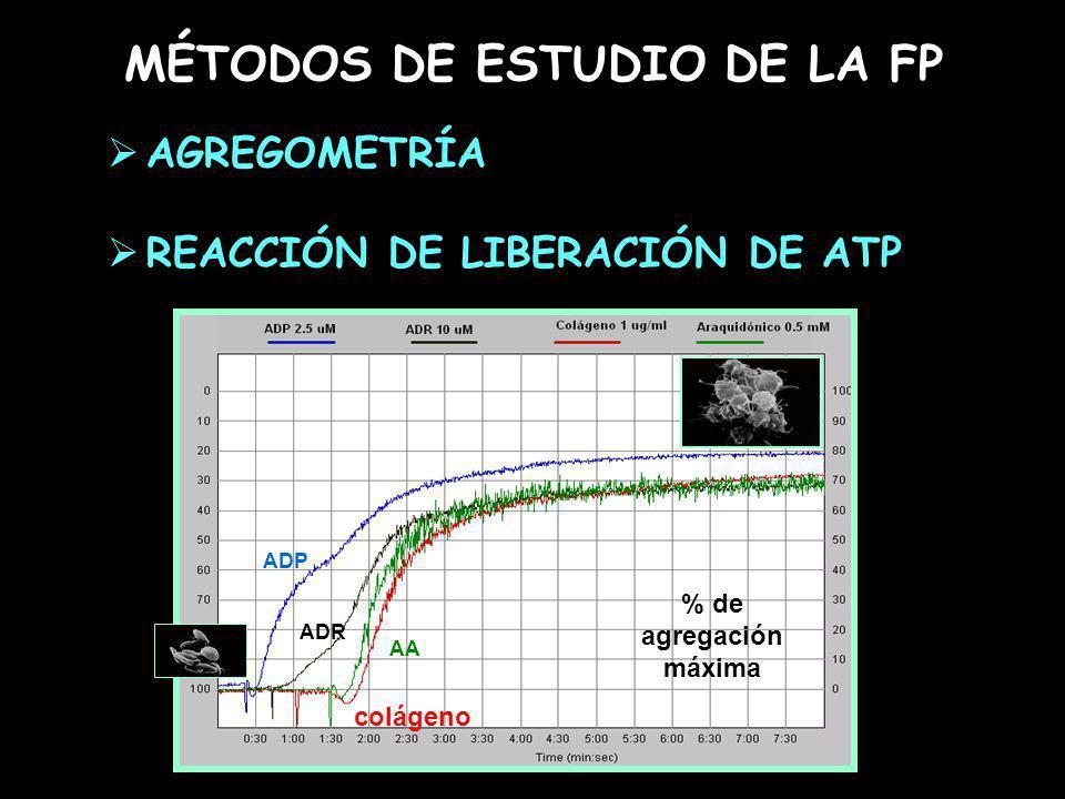 MÉTODOS DE ESTUDIO DE LA FP