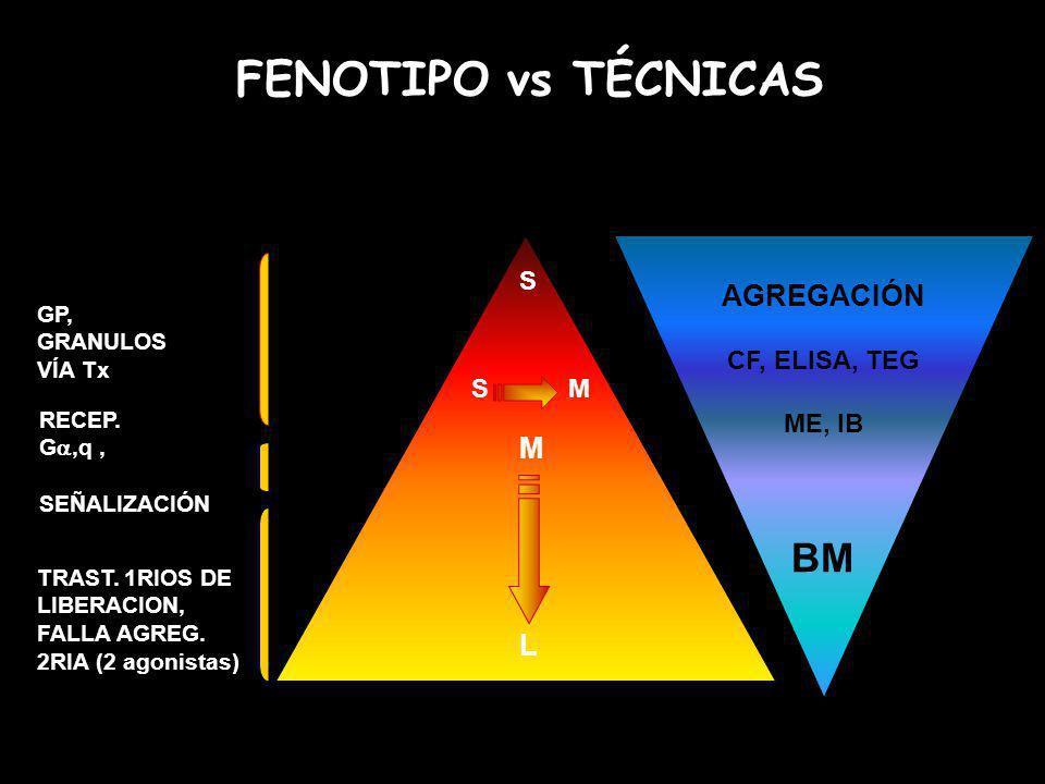 FENOTIPO vs TÉCNICAS BM AGREGACIÓN M L S CF, ELISA, TEG ME, IB S M GP,