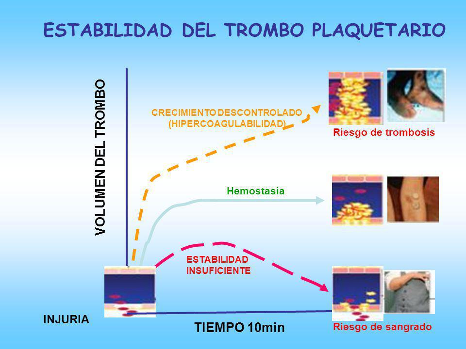 CRECIMIENTO DESCONTROLADO (HIPERCOAGULABILIDAD)