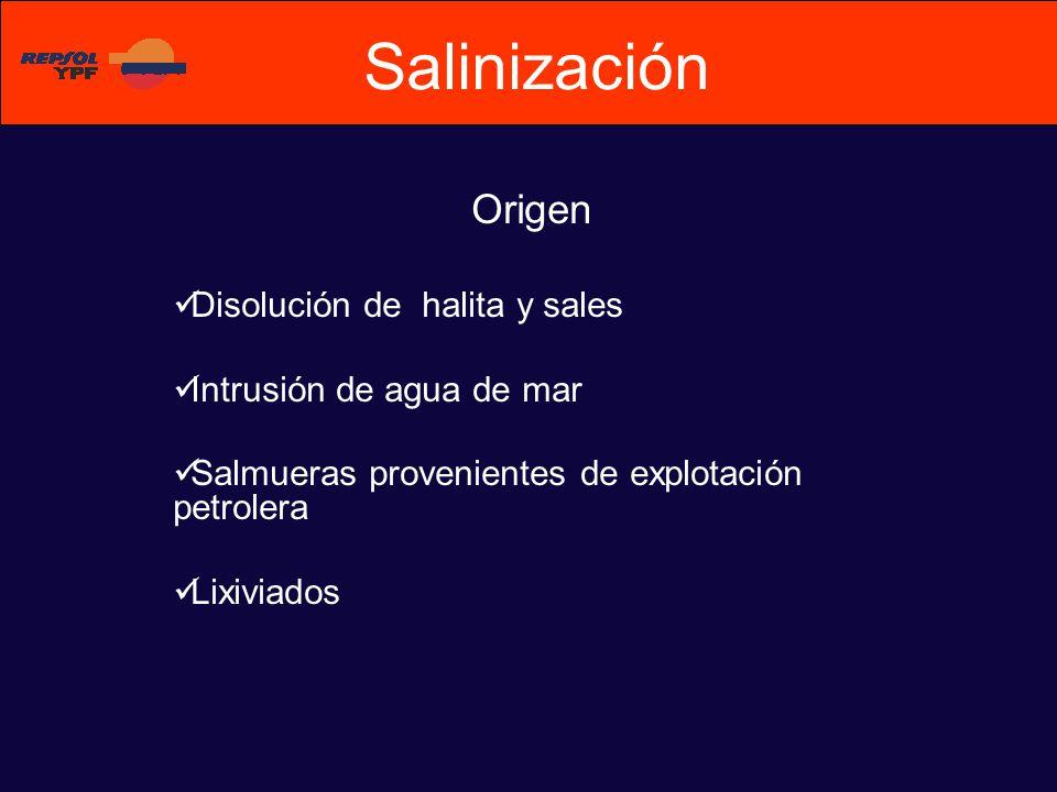 Salinización Origen Disolución de halita y sales