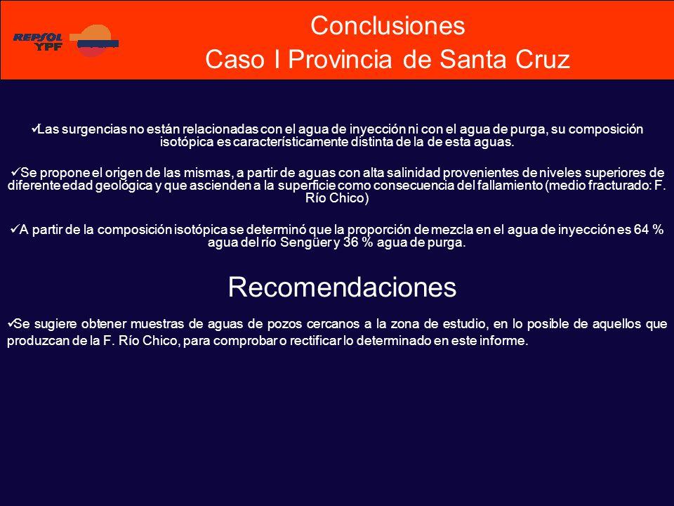 Conclusiones Caso I Provincia de Santa Cruz