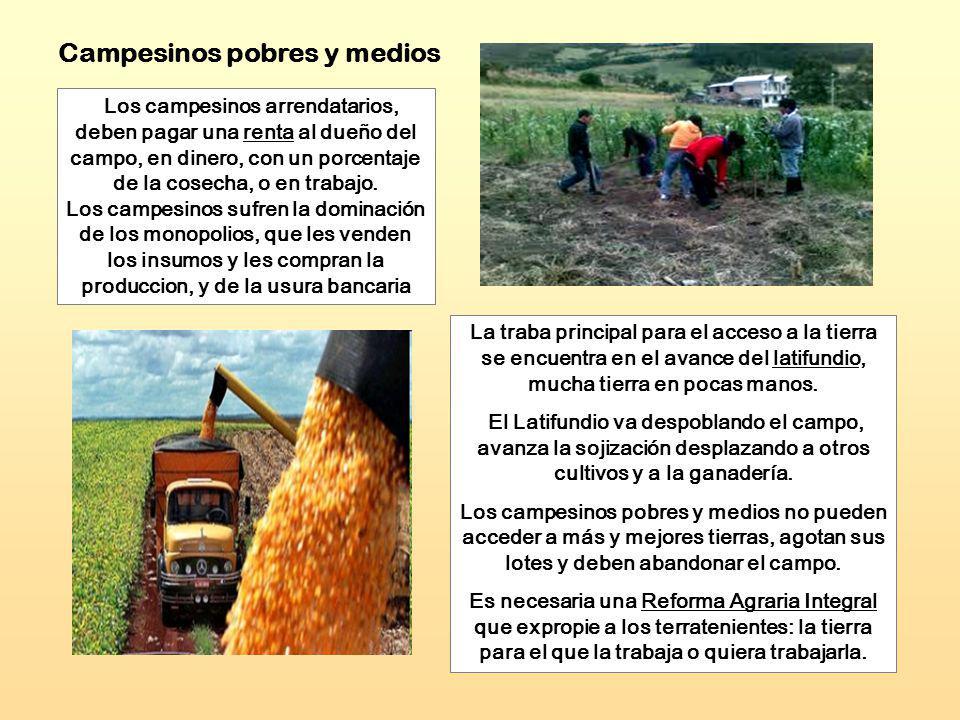 Campesinos pobres y medios