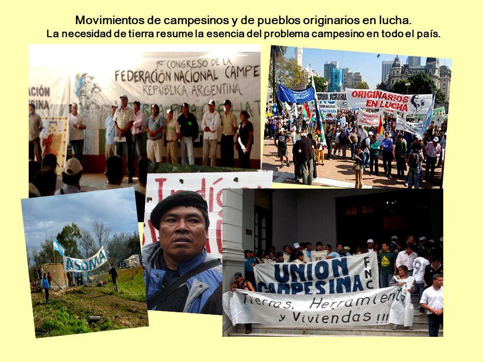 Movimientos de campesinos y de pueblos originarios en lucha