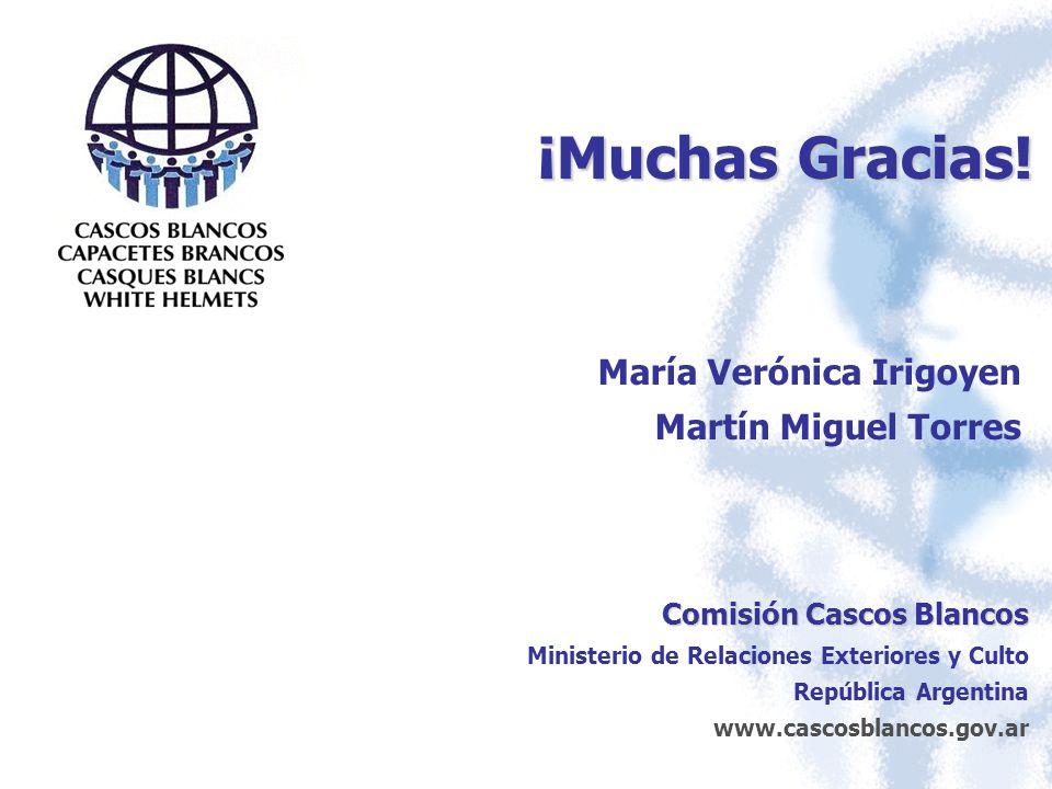 ¡Muchas Gracias! María Verónica Irigoyen Martín Miguel Torres