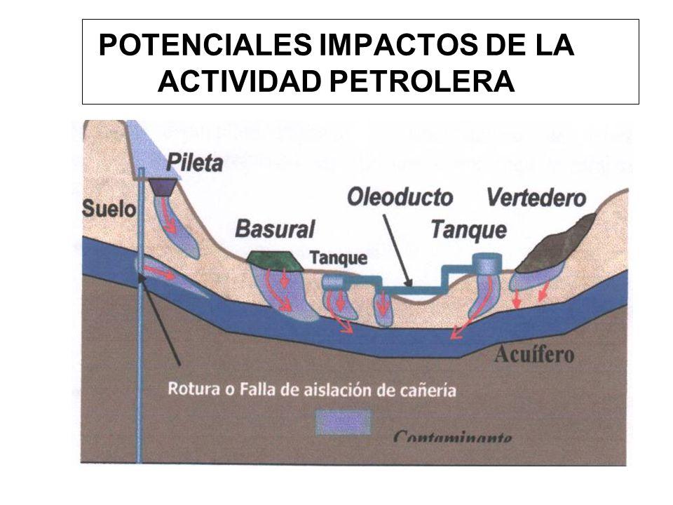 POTENCIALES IMPACTOS DE LA ACTIVIDAD PETROLERA