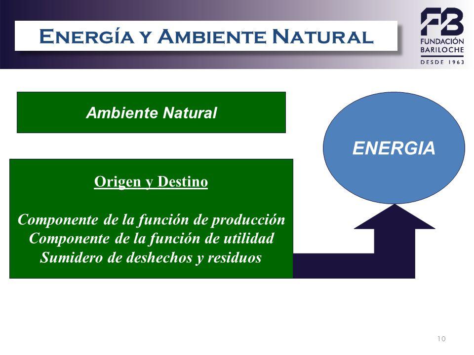 Energía y Ambiente Natural